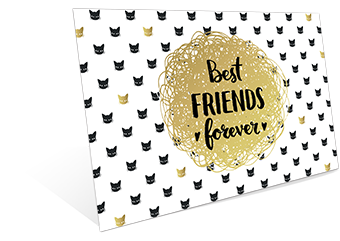 FF - Best Friend Forever
